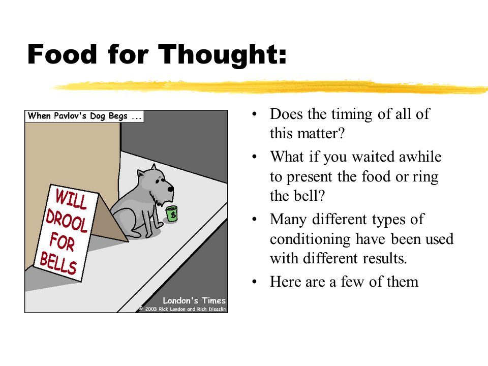 Food for Thought: Does the timing of all of this matter? What if you waited awhile to present the food or ring the bell? Many different types of condi