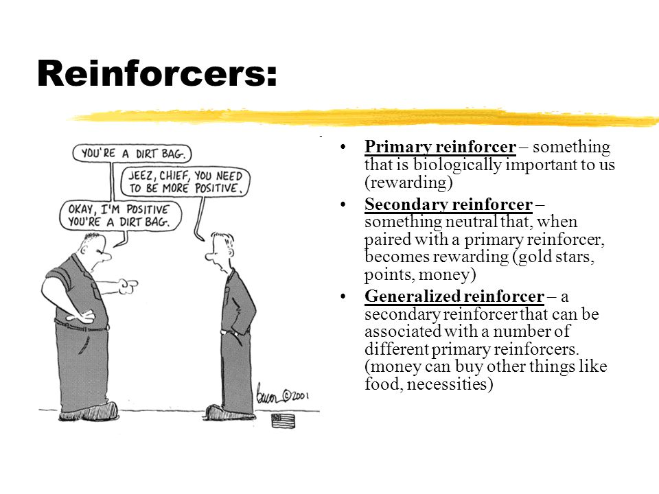 Reinforcers: Primary reinforcer – something that is biologically important to us (rewarding) Secondary reinforcer – something neutral that, when paire