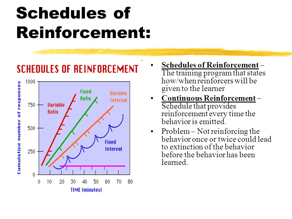 Schedules of Reinforcement: Schedules of Reinforcement – The training program that states how/when reinforcers will be given to the learner Continuous