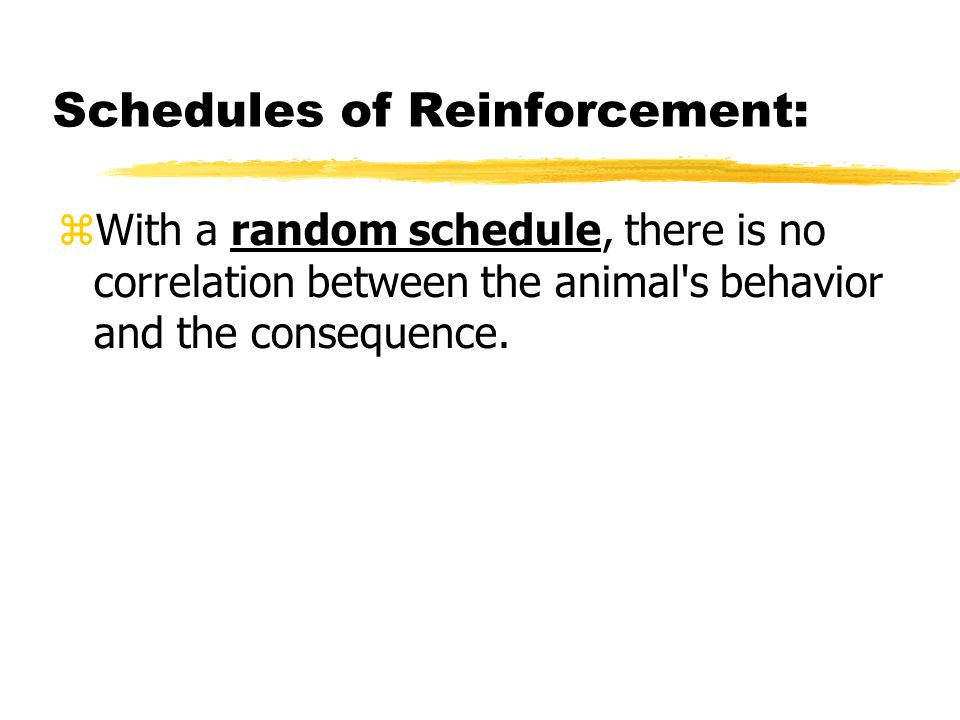 Schedules of Reinforcement:  With a random schedule, there is no correlation between the animal's behavior and the consequence.