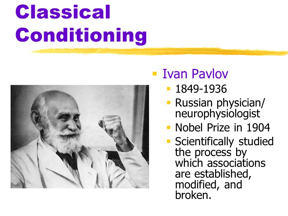 Classical Conditioning  Ivan Pavlov  1849-1936  Russian physician/ neurophysiologist  Nobel Prize in 1904  Scientifically studied the process by
