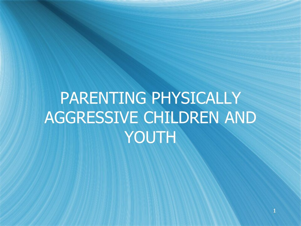 2 Today's Training Goal To assist families in understanding and managing physically aggressive behaviors in children and youth.