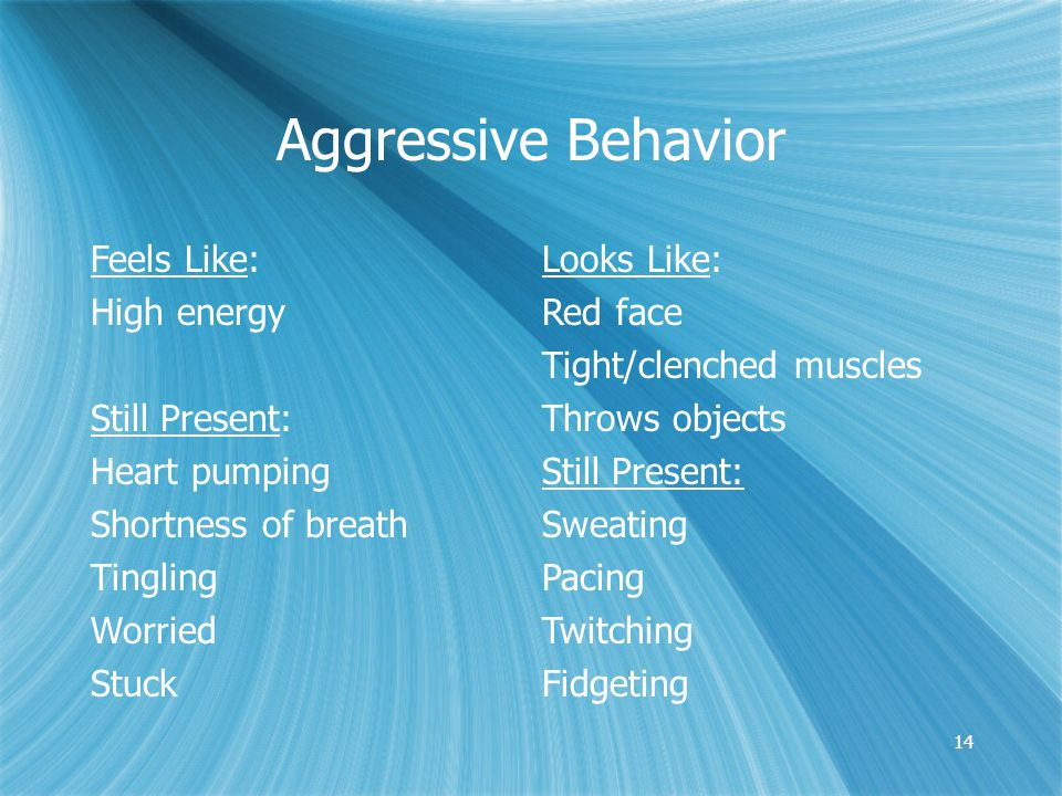 14 Aggressive Behavior Feels Like: High energy Still Present: Heart pumping Shortness of breath Tingling Worried Stuck Looks Like: Red face Tight/clenched muscles Throws objects Still Present: Sweating Pacing Twitching Fidgeting
