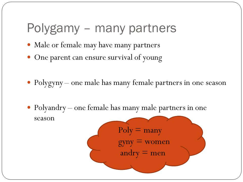 Polygamy – many partners Male or female may have many partners One parent can ensure survival of young Polygyny – one male has many female partners in