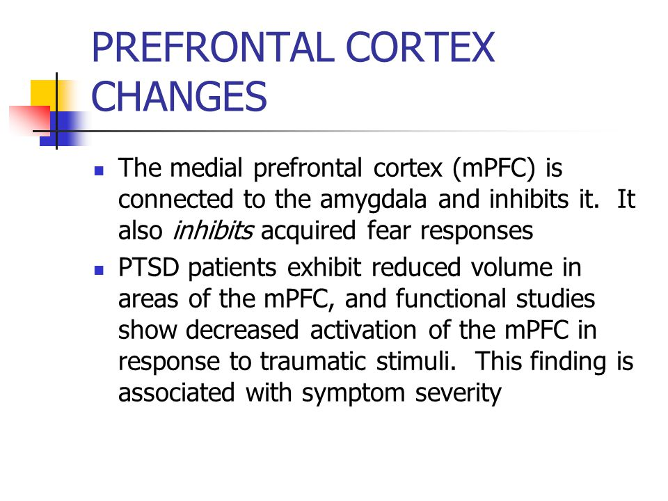 PREFRONTAL CORTEX CHANGES The medial prefrontal cortex (mPFC) is connected to the amygdala and inhibits it.