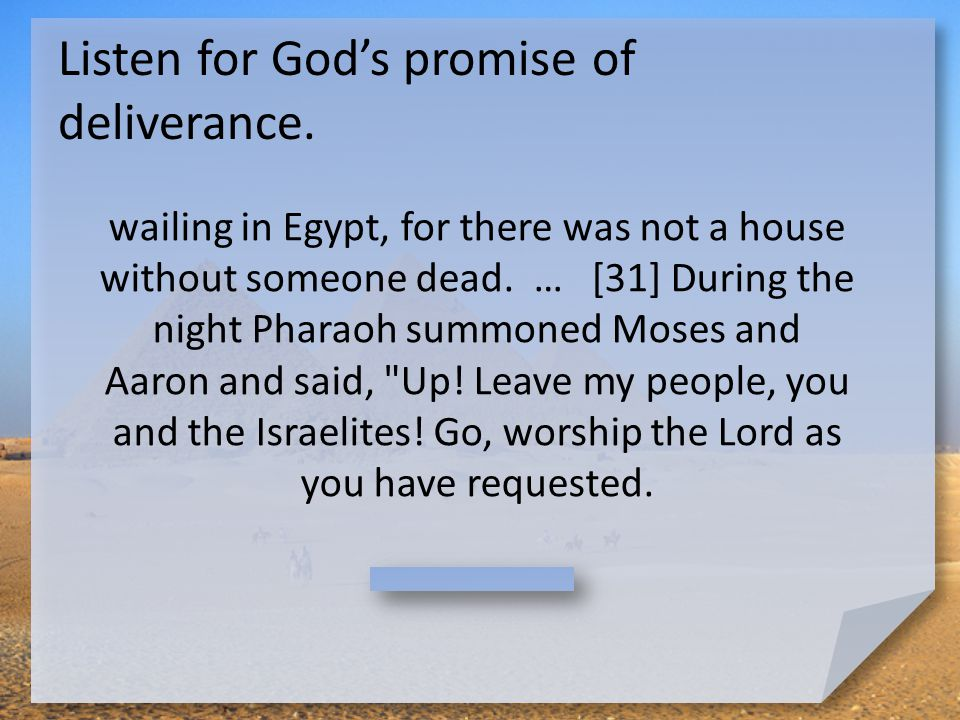God Judges According to verse 12, what did God say He was going to do on the Passover night.