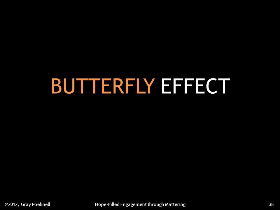 BUTTERFLY EFFECT @2012, Gray PoehnellHope-Filled Engagement through Mattering38