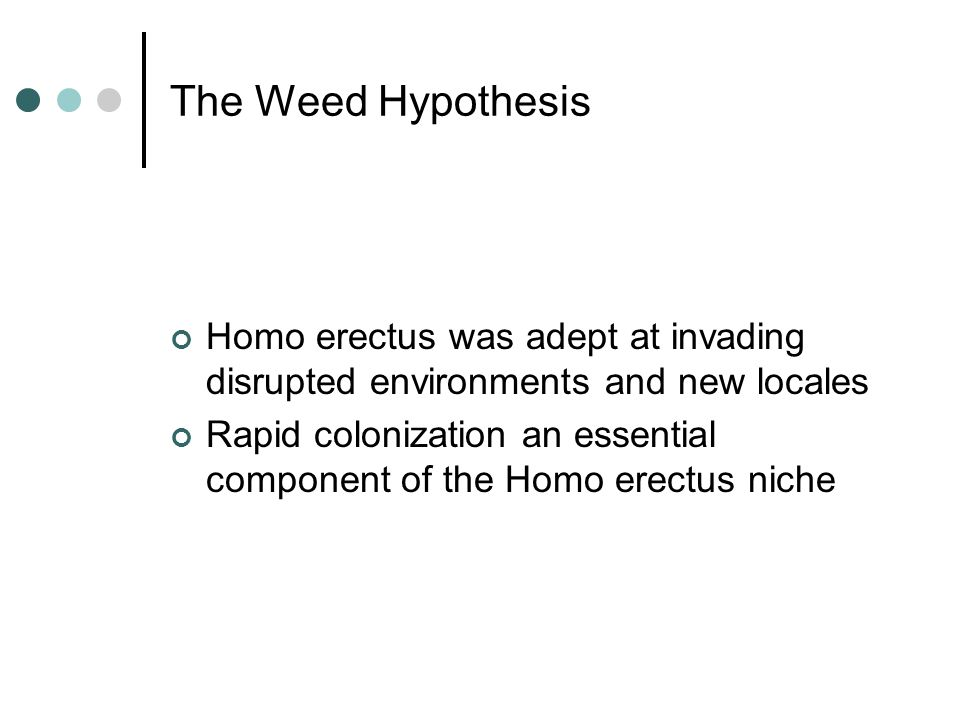 The Weed Hypothesis Homo erectus was adept at invading disrupted environments and new locales Rapid colonization an essential component of the Homo erectus niche