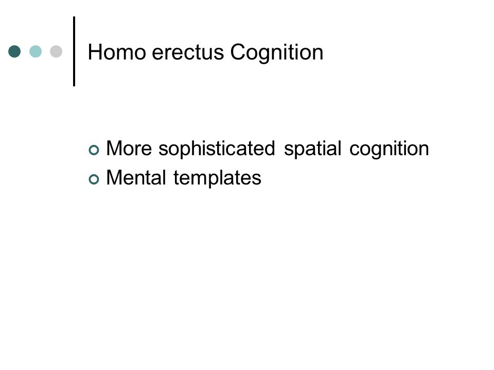 Homo erectus Cognition More sophisticated spatial cognition Mental templates