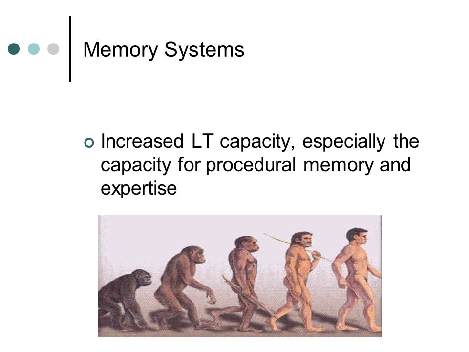 Memory Systems Increased LT capacity, especially the capacity for procedural memory and expertise