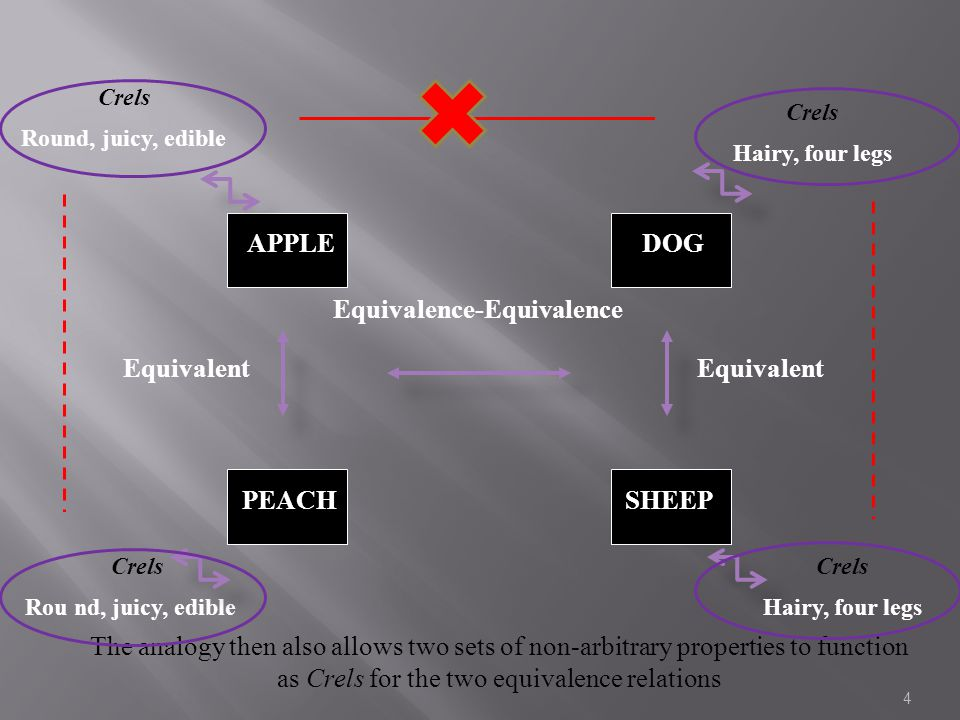 4 Crels Round, juicy, edible Equivalent APPLE SHEEPPEACH DOG Equivalence-Equivalence Equivalent The analogy then also allows two sets of non-arbitrary