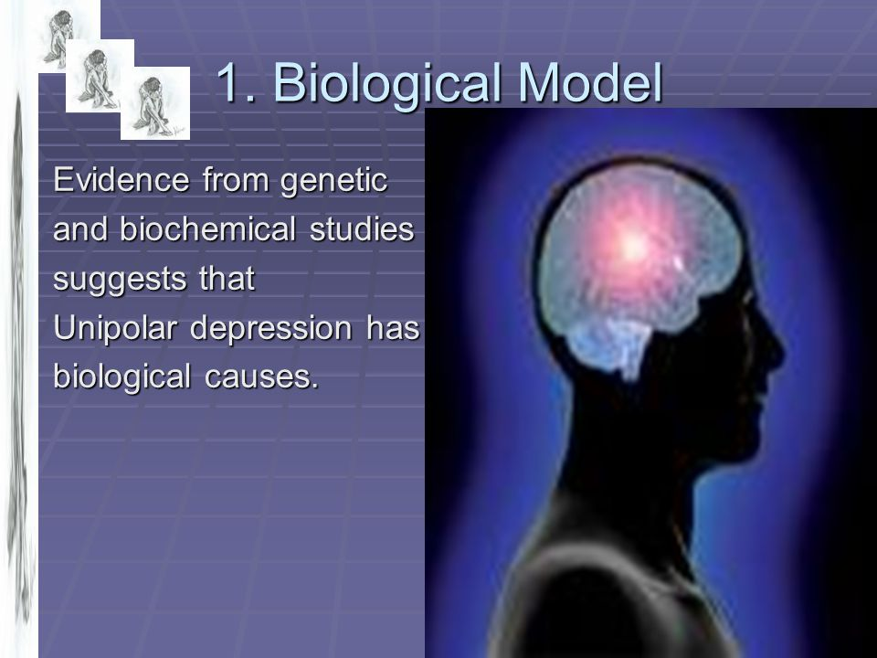 1. Biological Model Evidence from genetic and biochemical studies suggests that Unipolar depression has biological causes.