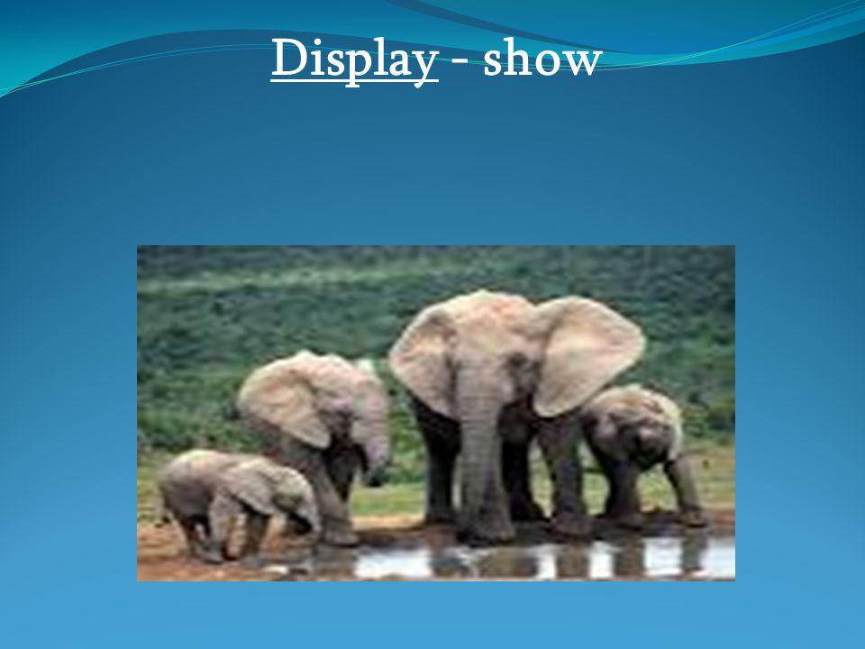 Display - show
