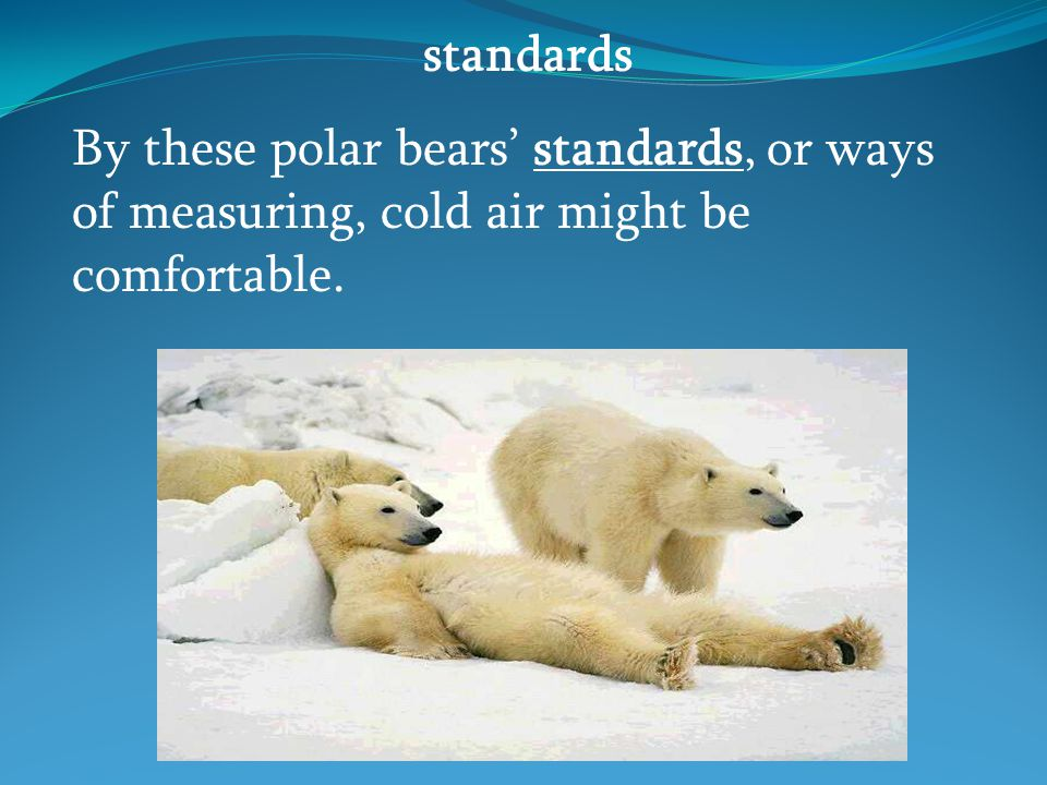 standards By these polar bears' standards, or ways of measuring, cold air might be comfortable.