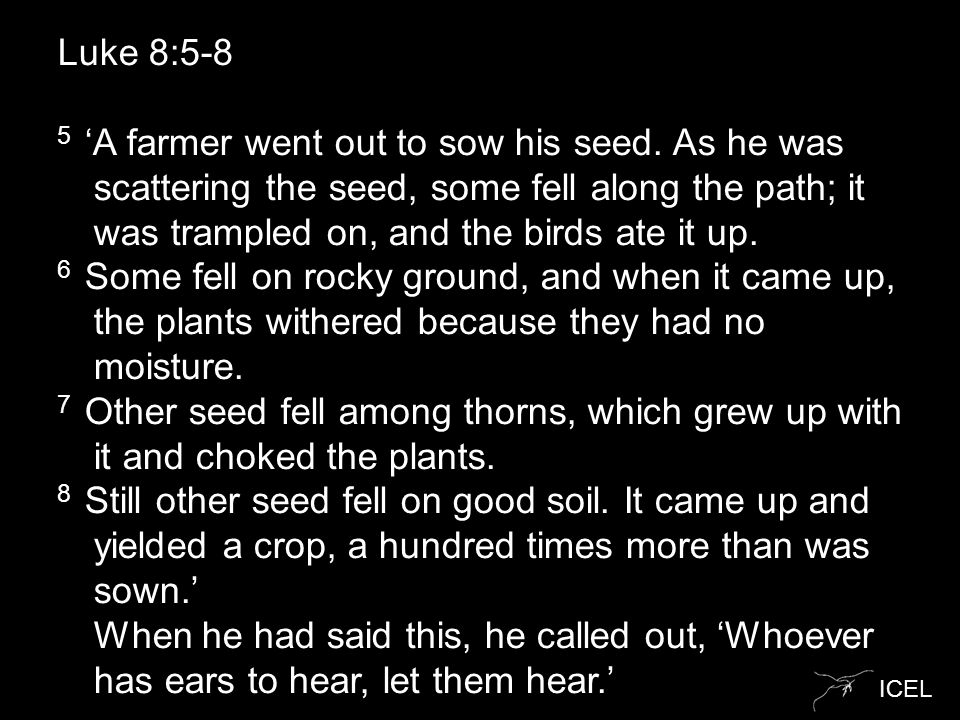 ICEL Luke 8:5-8 5 'A farmer went out to sow his seed.