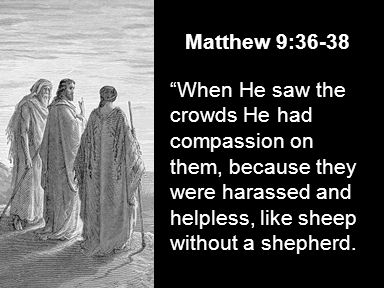 Matthew 9:36-38 When He saw the crowds He had compassion on them, because they were harassed and helpless, like sheep without a shepherd.