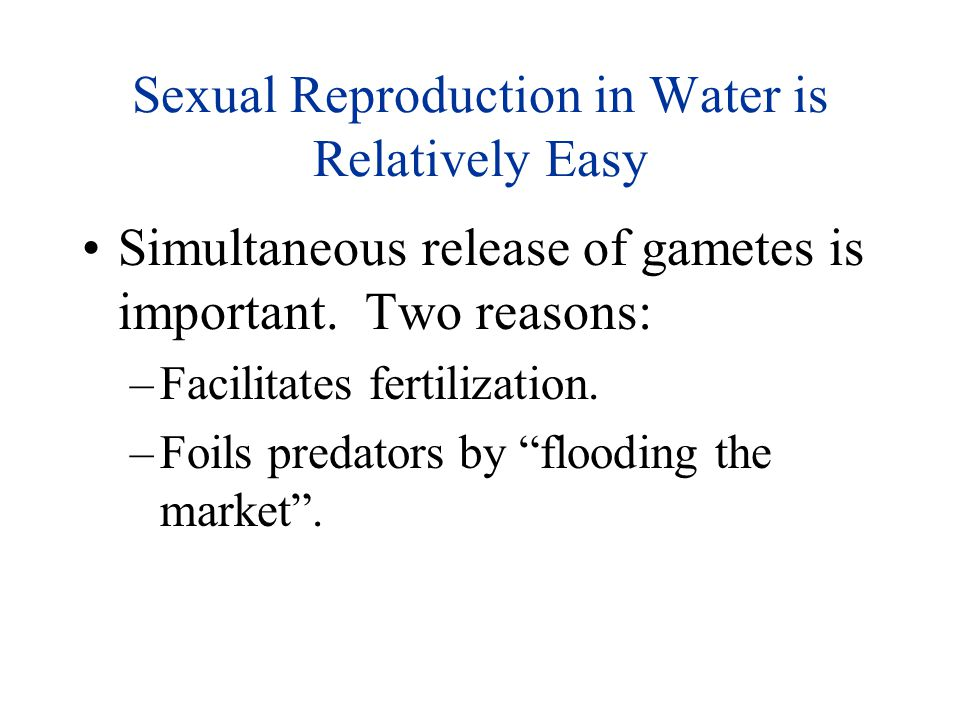 Sexual Reproduction in Water is Relatively Easy Simultaneous release of gametes is important. Two reasons: –Facilitates fertilization. –Foils predator