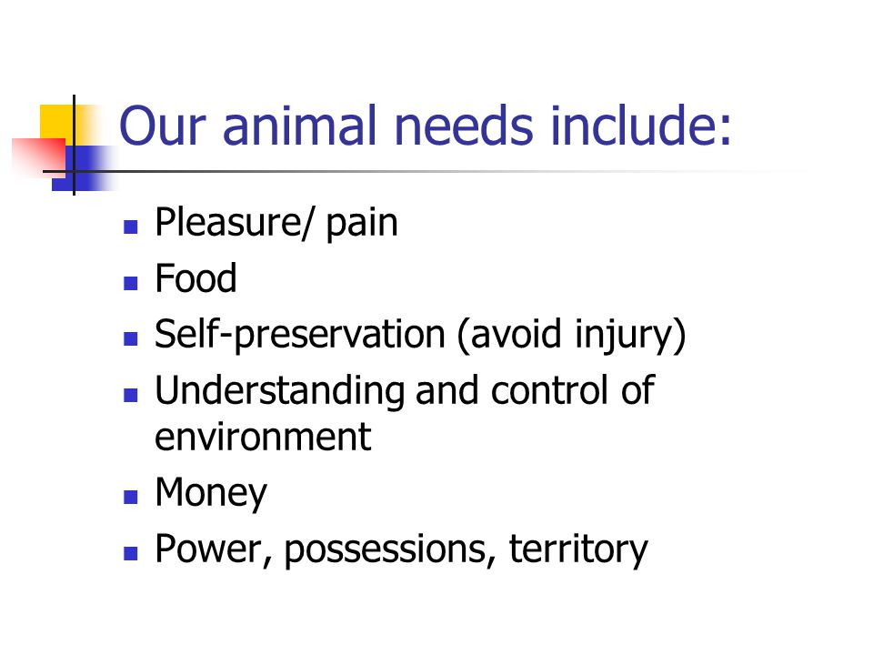 Our animal needs include: Pleasure/ pain Food Self-preservation (avoid injury) Understanding and control of environment Money Power, possessions, territory