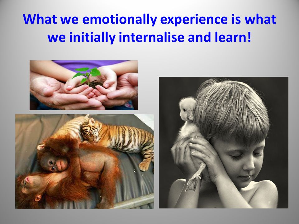 What we emotionally experience is what we initially internalise and learn!