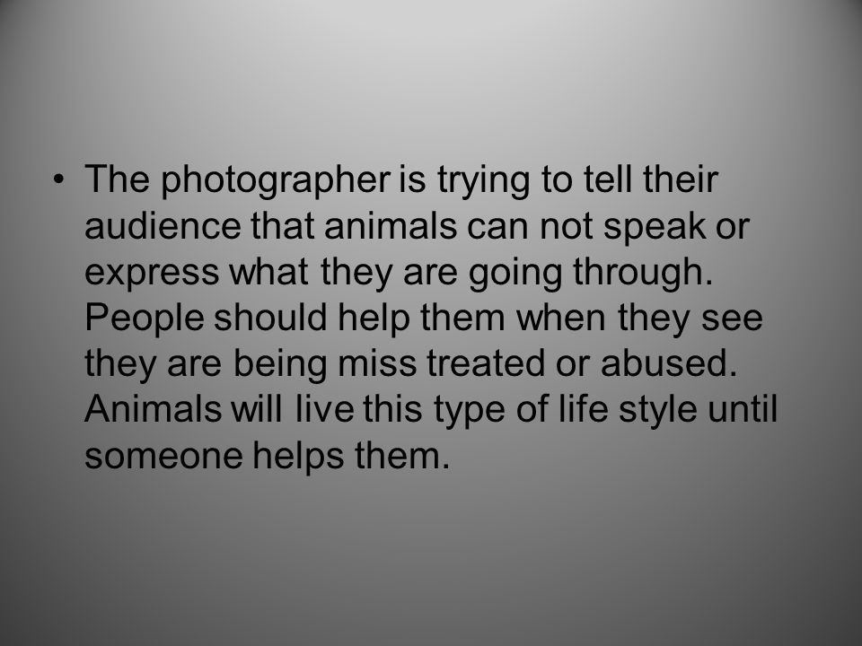 The photographer is trying to tell their audience that animals can not speak or express what they are going through. People should help them when they