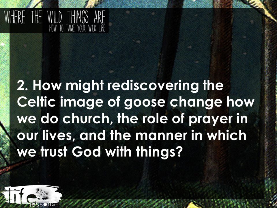 2. How might rediscovering the Celtic image of goose change how we do church, the role of prayer in our lives, and the manner in which we trust God wi