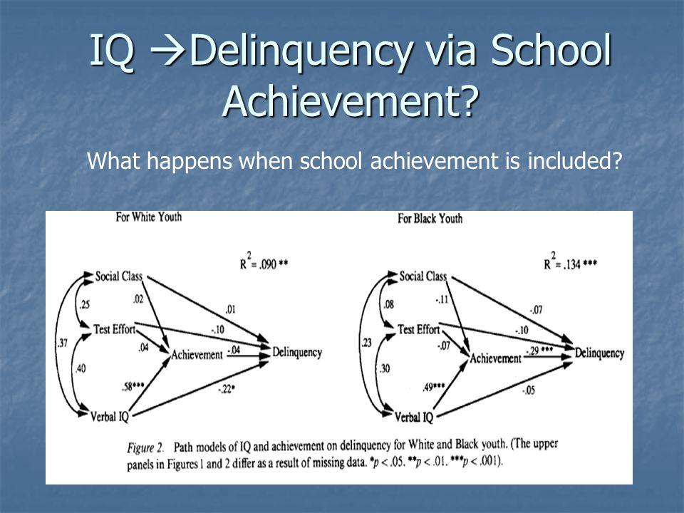 IQ  Delinquency via School Achievement What happens when school achievement is included