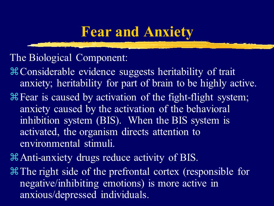Fear and Anxiety The Biological Component: zConsiderable evidence suggests heritability of trait anxiety; heritability for part of brain to be highly active.