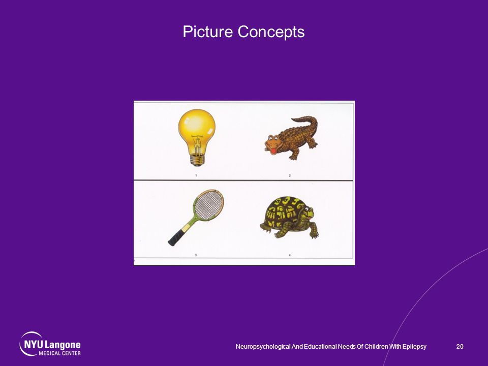 Picture Concepts 20Neuropsychological And Educational Needs Of Children With Epilepsy