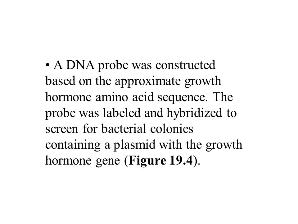A DNA probe was constructed based on the approximate growth hormone amino acid sequence.