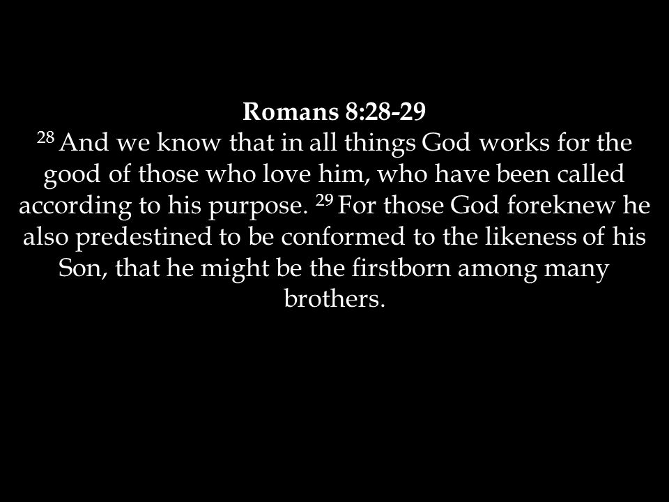 Romans 8:28-29 28 And we know that in all things God works for the good of those who love him, who have been called according to his purpose.