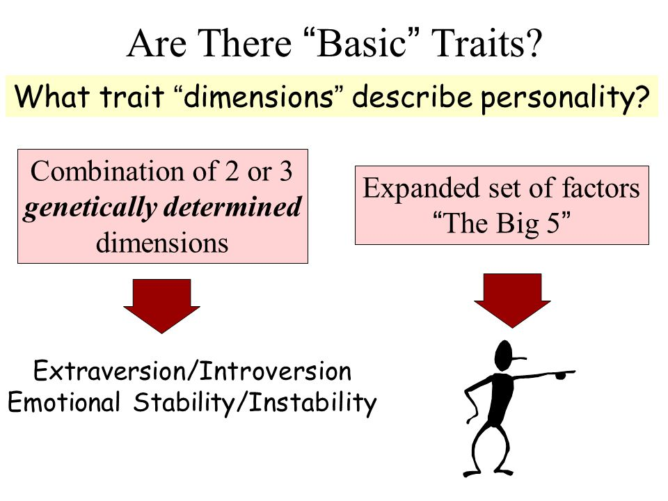 Traits. What trait dimensions describe personality.