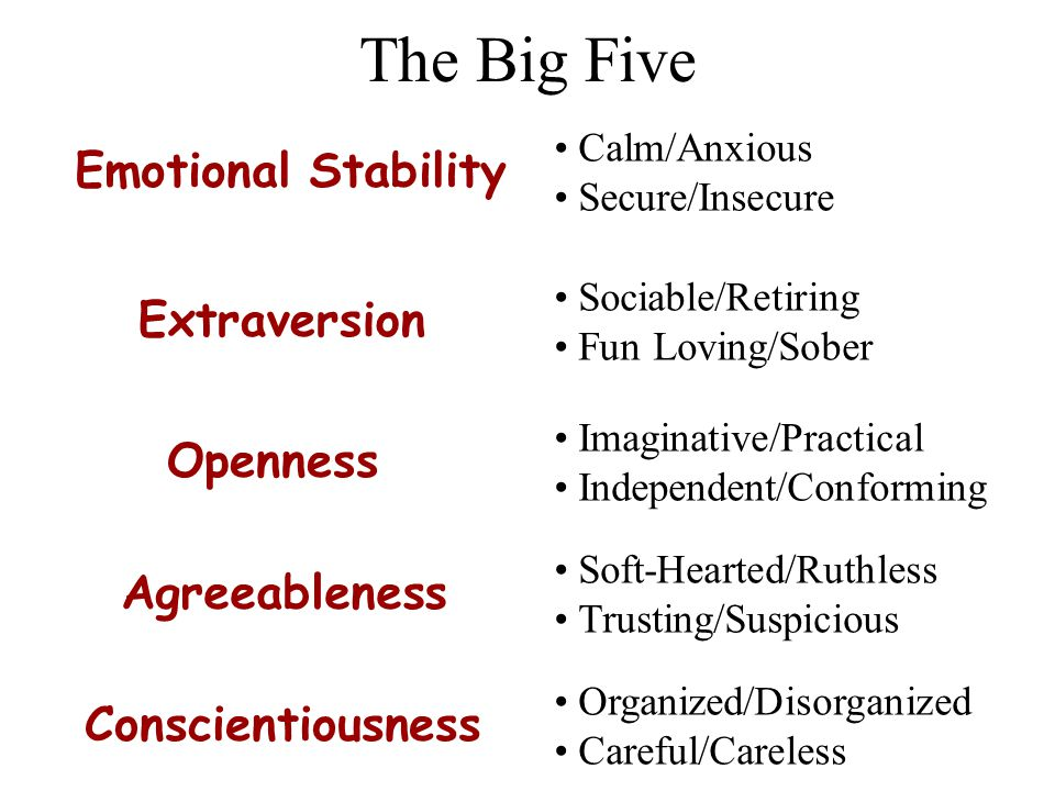 Are There Basic Traits. What trait dimensions describe personality.