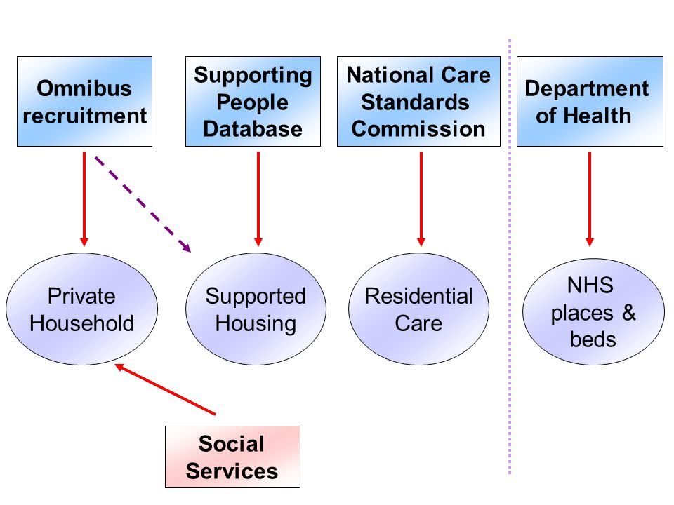Department of Health National Care Standards Commission Supporting People Database Omnibus recruitment Social Services NHS places & beds Residential Care Supported Housing Private Household