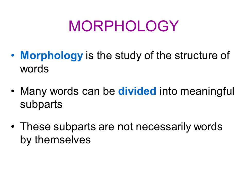 MORPHOLOGY For example, 'friend' can become: 'friendly' 'unfriendly' 'friendliness' 'friendship' 'friendless' 'friendlessness' 'befriend' 'befriended' 'user-friendly' 'friends'