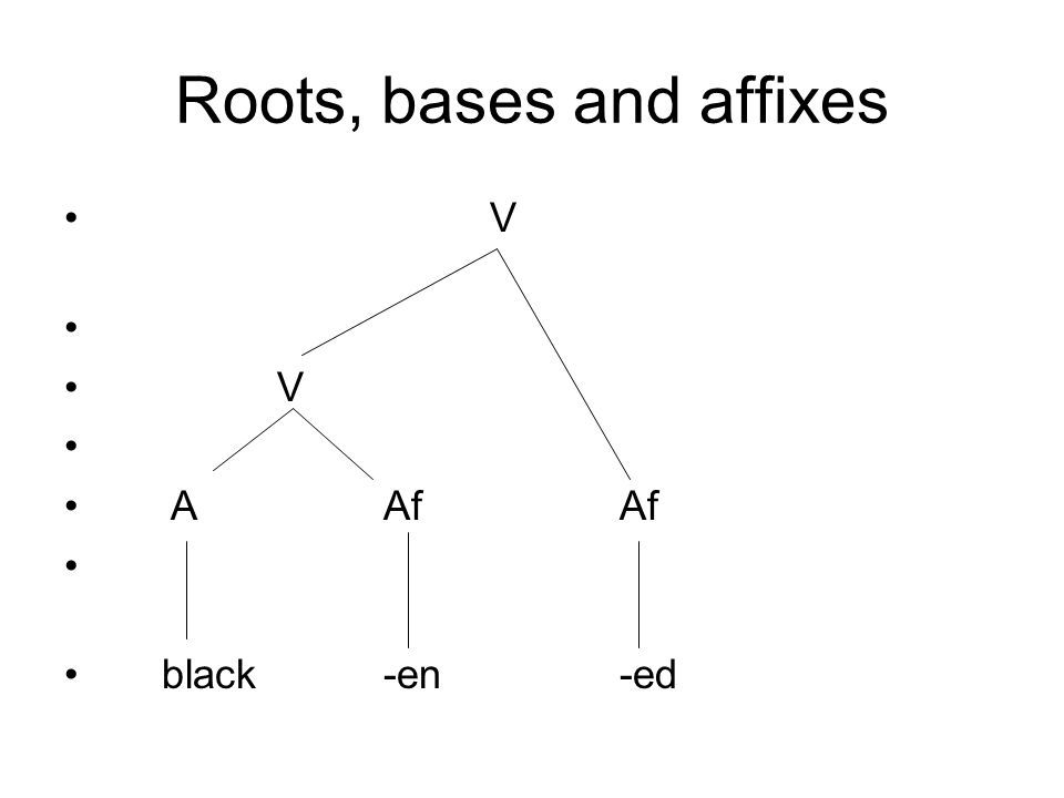 Roots, bases and affixes V V AAf Af black-en -ed