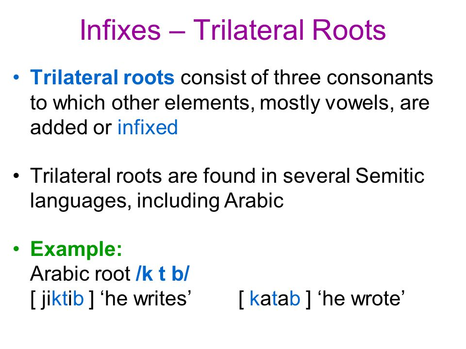 Infixes – Trilateral Roots Trilateral roots consist of three consonants to which other elements, mostly vowels, are added or infixed Trilateral roots are found in several Semitic languages, including Arabic Example: Arabic root /k t b/ [ jiktib ] 'he writes' [ katab ] 'he wrote'