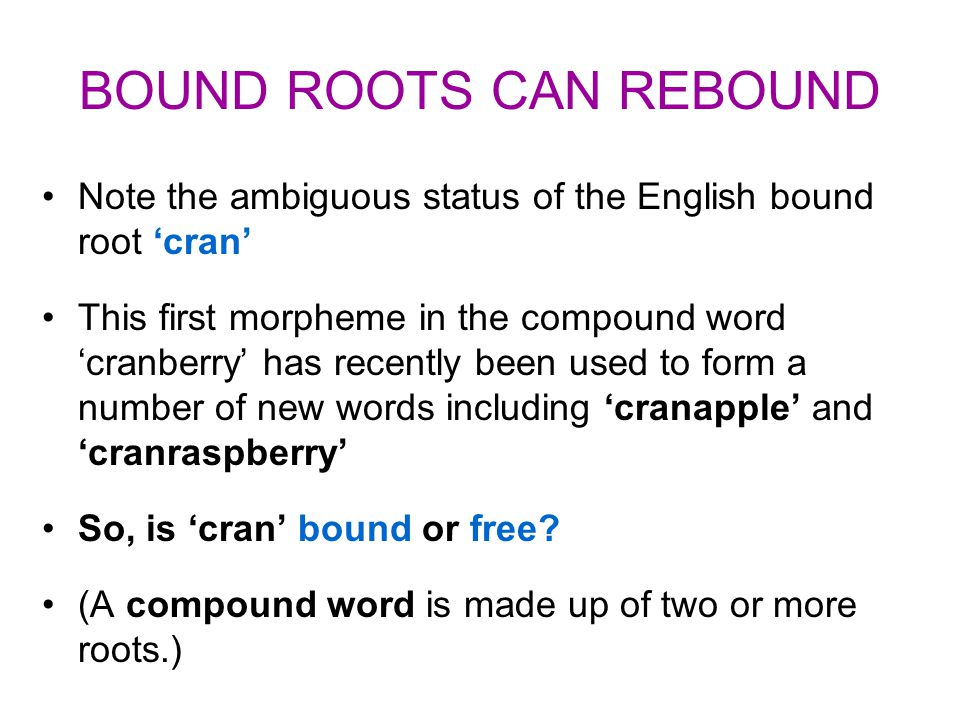 BOUND ROOTS CAN REBOUND Note the ambiguous status of the English bound root 'cran' This first morpheme in the compound word 'cranberry' has recently b