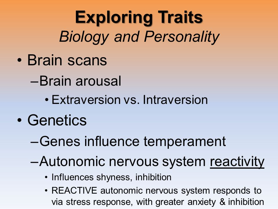 Exploring Traits Exploring Traits Biology and Personality Brain scans –Brain arousal Extraversion vs.