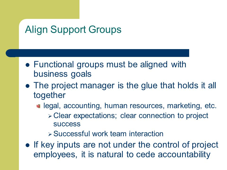 Align Support Groups Functional groups must be aligned with business goals The project manager is the glue that holds it all together legal, accounting, human resources, marketing, etc.