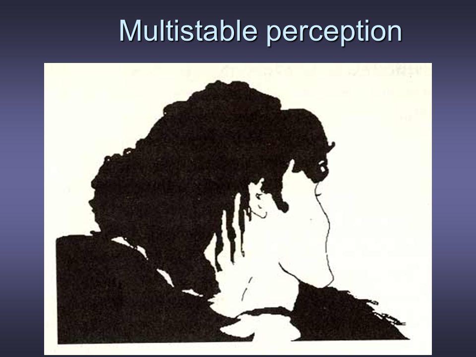 Multistable perception