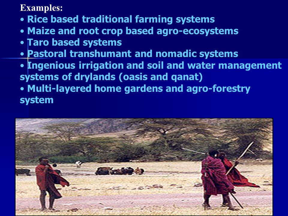 GIAHS DEVELOPMENT GOALS: Improving understanding of agriculture systems in their environmental, socio-economic policy and cultural dimensions Improving understanding of agriculture systems in their environmental, socio-economic policy and cultural dimensions Generating increased recognition of the global significance of agricultural systems Generating increased recognition of the global significance of agricultural systems Building the capacity of national and local institutions and providing support to promote dynamic conservation and sustained viability Building the capacity of national and local institutions and providing support to promote dynamic conservation and sustained viability Conservation and sustainable use and, rehabilitation of agricultural biodiversity and genetic patrimony, ecosystem services and landscape diversity Conservation and sustainable use and, rehabilitation of agricultural biodiversity and genetic patrimony, ecosystem services and landscape diversity Recognition and safeguarding and of the resilience provided by the combination of knowledge systems and social organisation Recognition and safeguarding and of the resilience provided by the combination of knowledge systems and social organisation Mitigating threats of degradation and root causes of dysfunction and enhancing environmental and socio-economic benefits at local and global levels and; Mitigating threats of degradation and root causes of dysfunction and enhancing environmental and socio-economic benefits at local and global levels and; Adding economic, environmental and cultural value to products, artefacts and knowledge systems of GIAHS by supportive policies and incentives for their sustainability Adding economic, environmental and cultural value to products, artefacts and knowledge systems of GIAHS by supportive policies and incentives for their sustainability