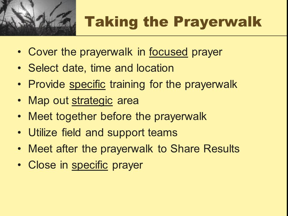 Taking the Prayerwalk Cover the prayerwalk in focused prayer Select date, time and location Provide specific training for the prayerwalk Map out strat