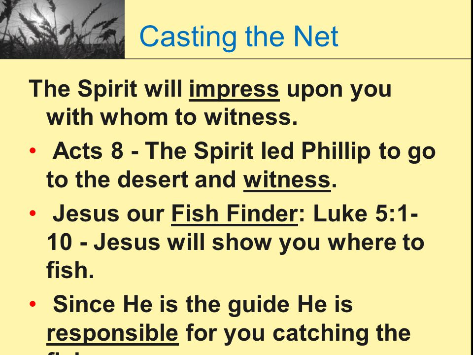 Casting the Net The Spirit will impress upon you with whom to witness. Acts 8 - The Spirit led Phillip to go to the desert and witness. Jesus our Fish