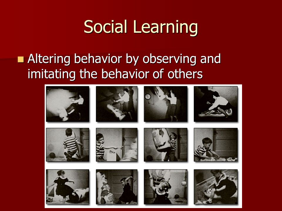 Social Learning Altering behavior by observing and imitating the behavior of others Altering behavior by observing and imitating the behavior of others