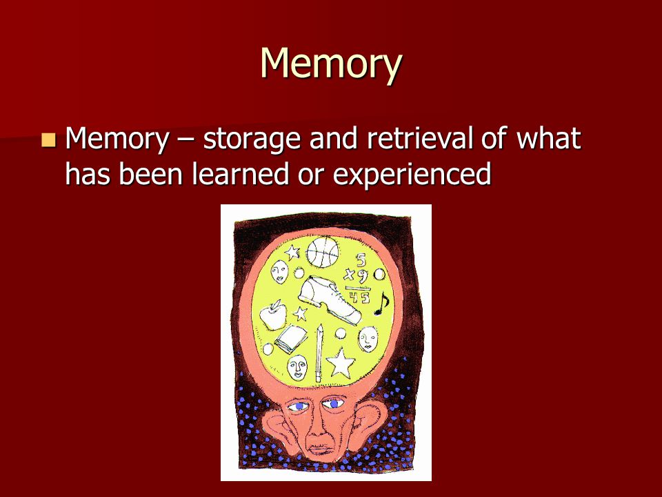 Memory Memory – storage and retrieval of what has been learned or experienced Memory – storage and retrieval of what has been learned or experienced