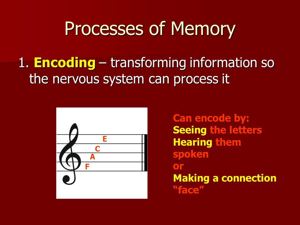 Processes of Memory 1.