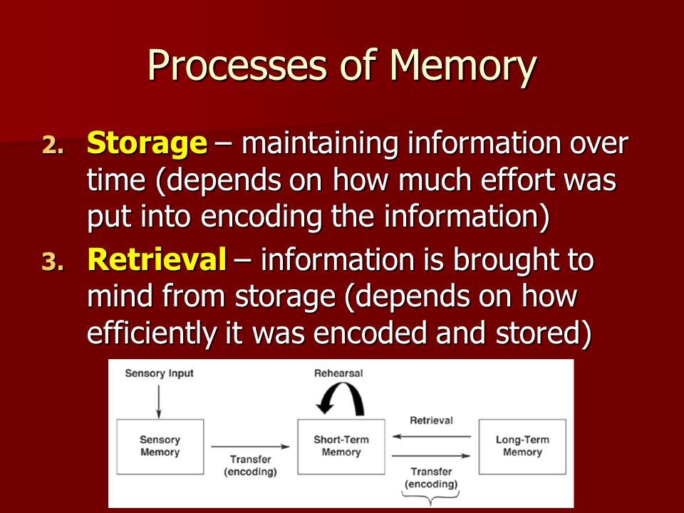 Processes of Memory 2.