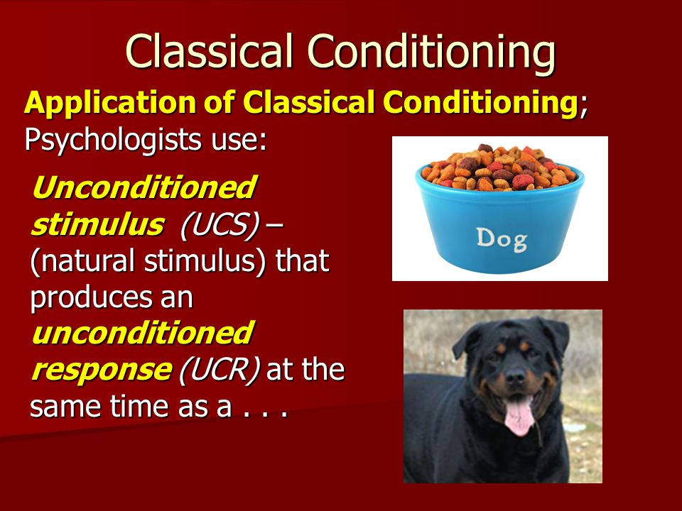Classical Conditioning Application of Classical Conditioning; Psychologists use: Unconditioned stimulus (UCS) – (natural stimulus) that produces an unconditioned response (UCR) at the same time as a...