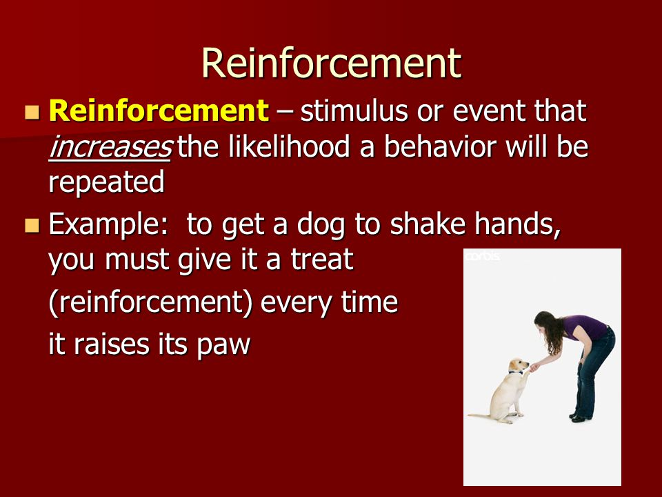 Reinforcement Reinforcement – stimulus or event that increases the likelihood a behavior will be repeated Reinforcement – stimulus or event that increases the likelihood a behavior will be repeated Example: to get a dog to shake hands, you must give it a treat Example: to get a dog to shake hands, you must give it a treat (reinforcement) every time it raises its paw
