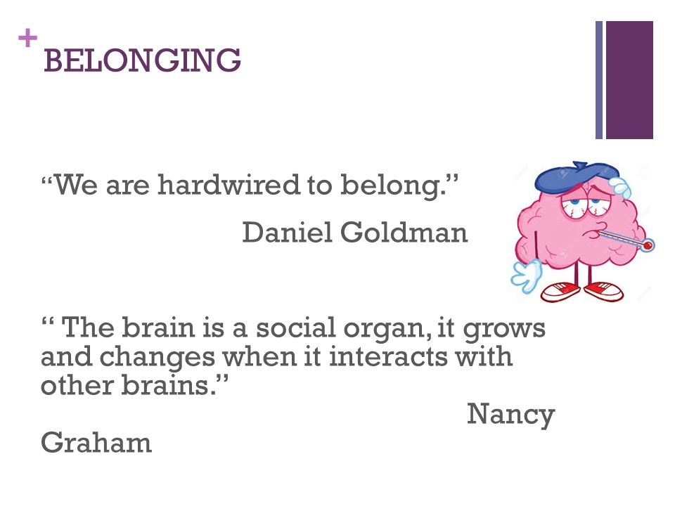 + BELONGING We are hardwired to belong. Daniel Goldman The brain is a social organ, it grows and changes when it interacts with other brains. Nancy Graham